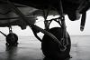 AMERICAN AIRPOWER MUSEUM INC Douglas DC-3C Republic - Farmingdale - (KFRG / FRG), USA N15SJ cn:33049 ������ 21, 2009  BOBAH333