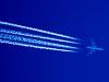 Thai Airways Airbus A340-642 Danylo Halytskyi - Lviv - (UKLL / LWO), Ukraine  cn: Июль 13, 2008  Taras Ilkiv