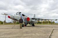Ukraine - Air Force Sukhoi Su-25 Ozernoye - Zhitomir - (UKKO), Ukraine 31 BLUE cn: Октябрь 14, 2017  Vladimir Vorobyov