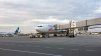 Turkish Airlines Airbus A330-303 Borispol - Kiev - (UKBB / KBP), Ukraine TC-LNC cn:1696 Май 15, 2018  Vladyslav Kysliakov