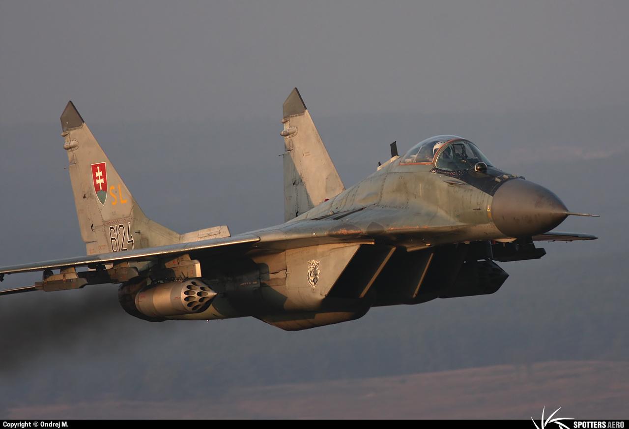 Armée Slovaque  0000059128_large